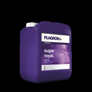 Plagron sugar royal-amsterdam-opvoorraad