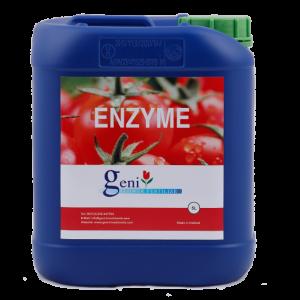geni-enzyme-amsterdam